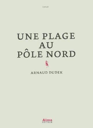 Une plage au pôle Nord
