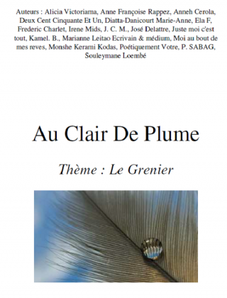 AU CLAIR DE PLUME : Le Grenier