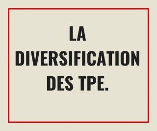 La diversification des TPE. E-book.