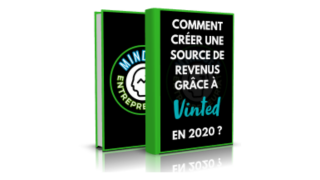 Comment se créer une source de revenus grâce à Vinted en 2020 ?