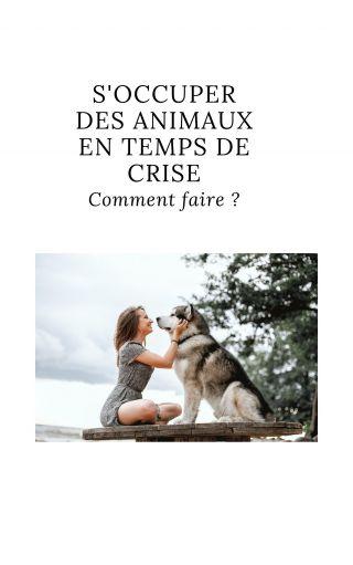 S'occuper des animaux en temps de crise