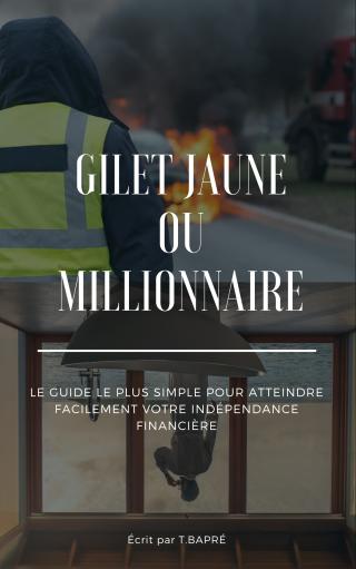 Gilet jaune ou Millionnaire: Fais ton choix !