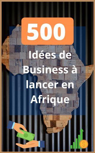 500 idées de Business a lancer en Afrique